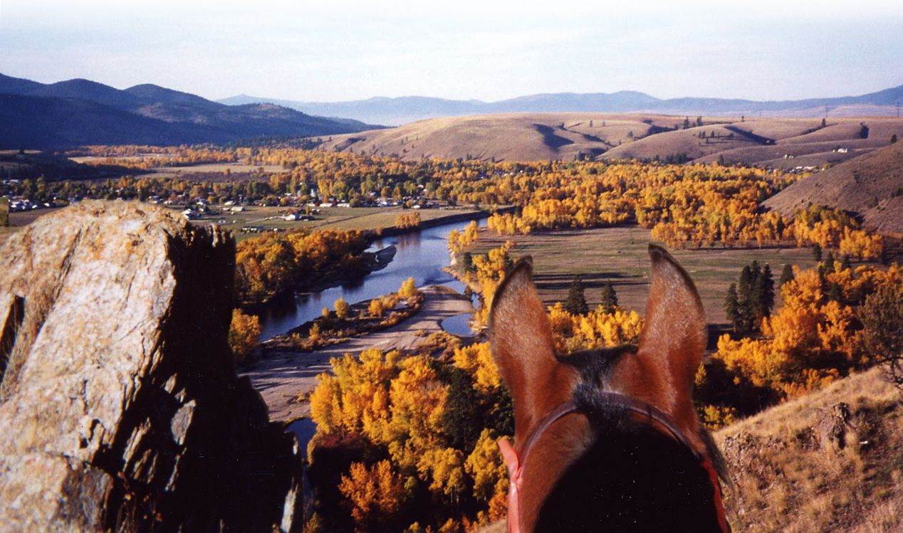 Dunrovin_photo-of-horse-overlooking-river