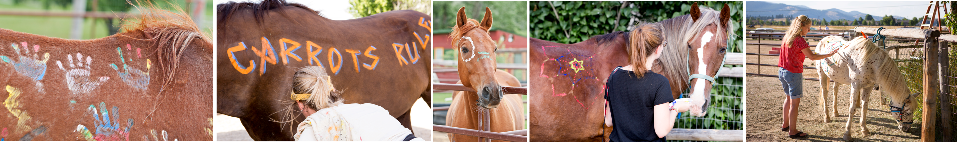 Horses of Many Hands